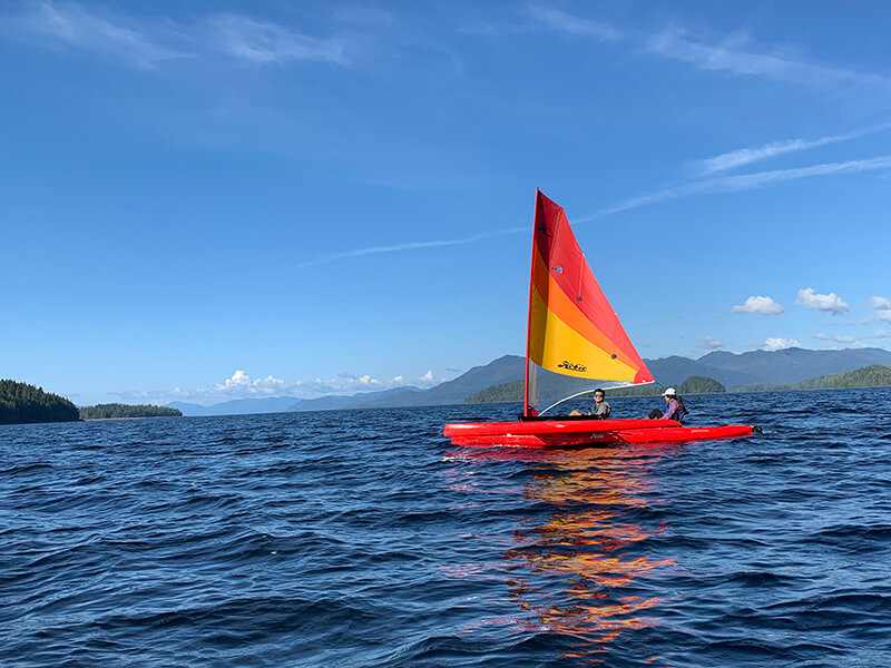 Sail and Whale Watch near Salmon Falls Resort